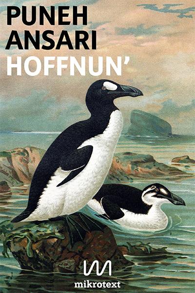 cover-puneh-ansari-hoffnun-mikrotext